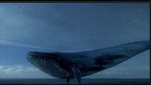 青い鯨ゲームの内容