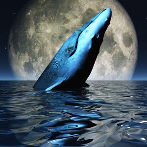 青い鯨ゲームが日本に上陸