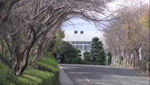 瀬戸康史の高校